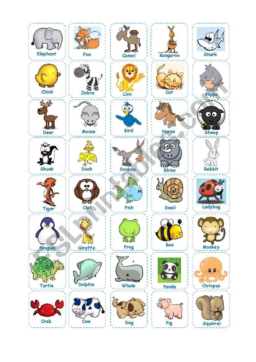 Animal Bingo (Teacher´s Cards)
