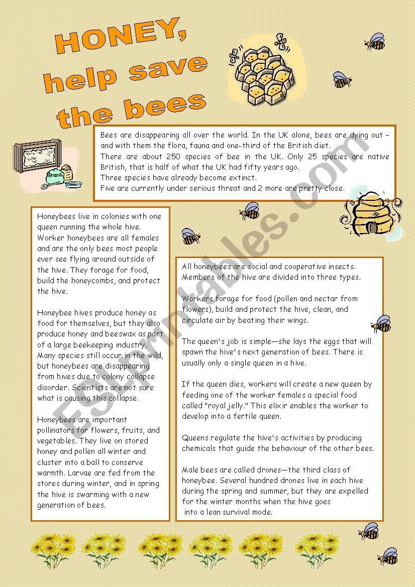 Honey, help save the bees worksheet