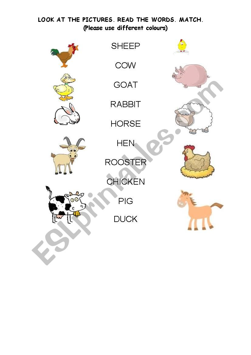 LOOK AT THE FARM ANIMALS. MATCH