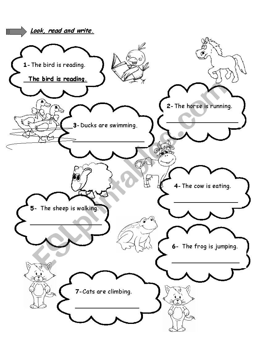 farm animals and actions esl worksheet by slhyasemin. Black Bedroom Furniture Sets. Home Design Ideas