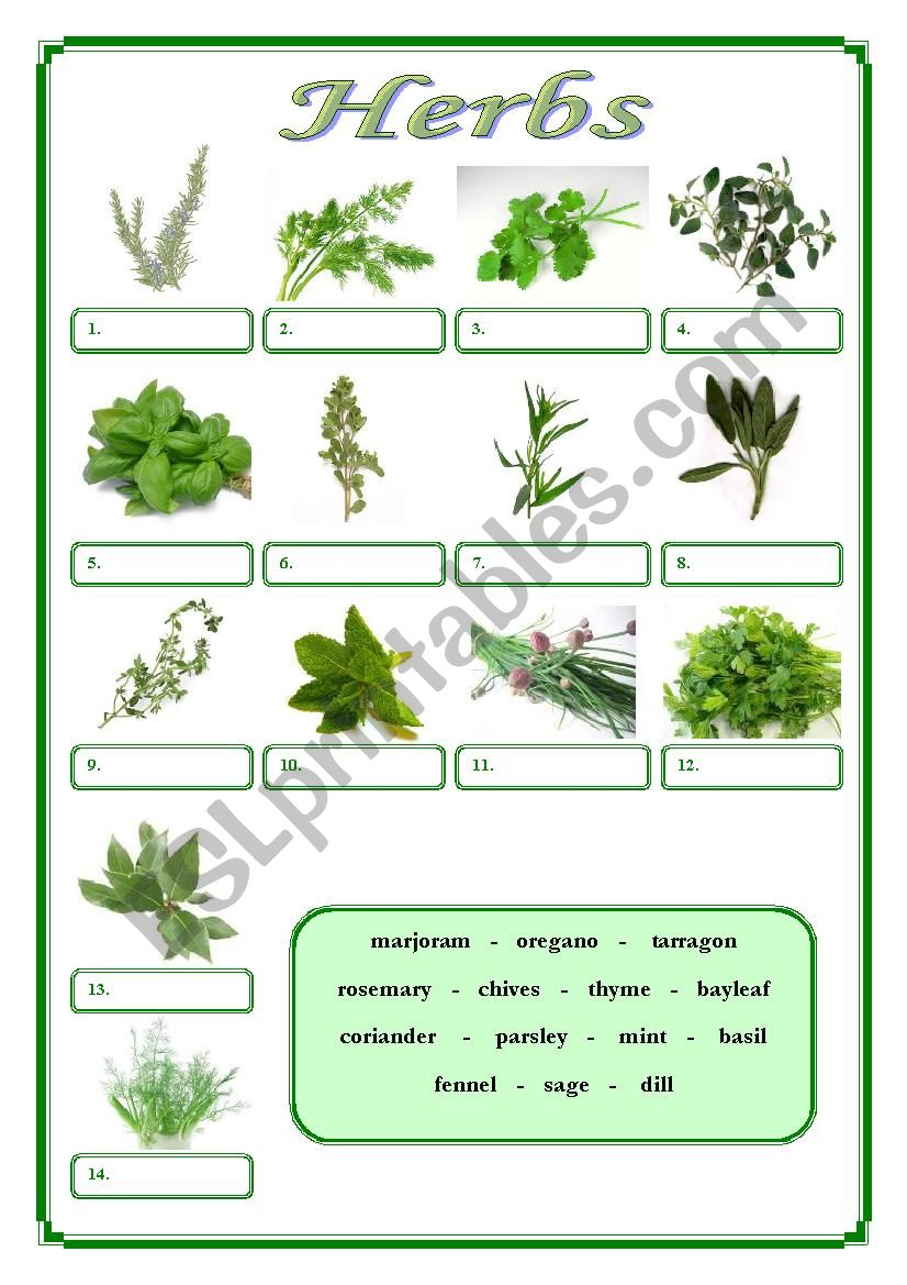 herbs esl worksheet by vdolphin. Black Bedroom Furniture Sets. Home Design Ideas
