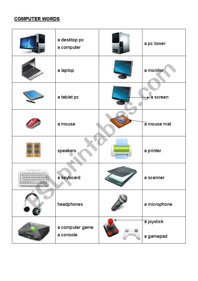 Computer words worksheet