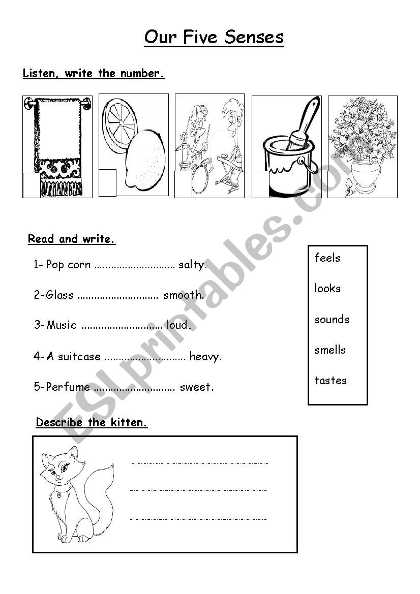 our five senses esl worksheet by umlulu. Black Bedroom Furniture Sets. Home Design Ideas