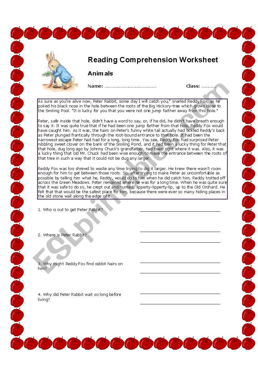 Peter Rabbit Reading Comprehension Worksheet Esl Worksheet By