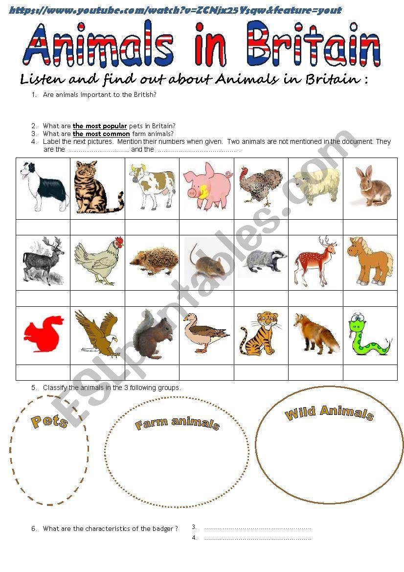 video - Animals in Britain worksheet