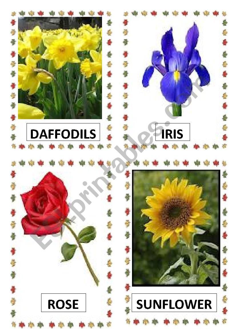 FLOWERS PART-1 worksheet