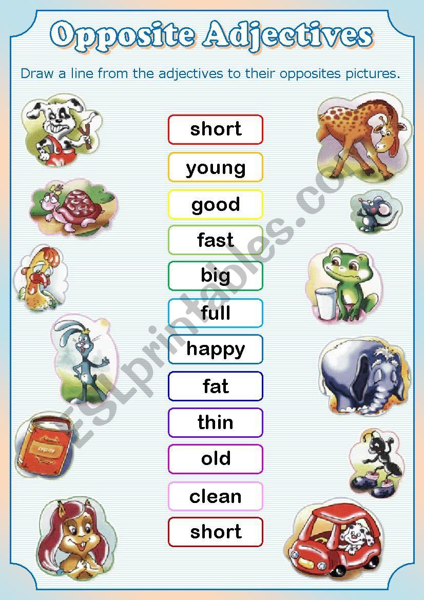 Opposite Adjectives worksheet