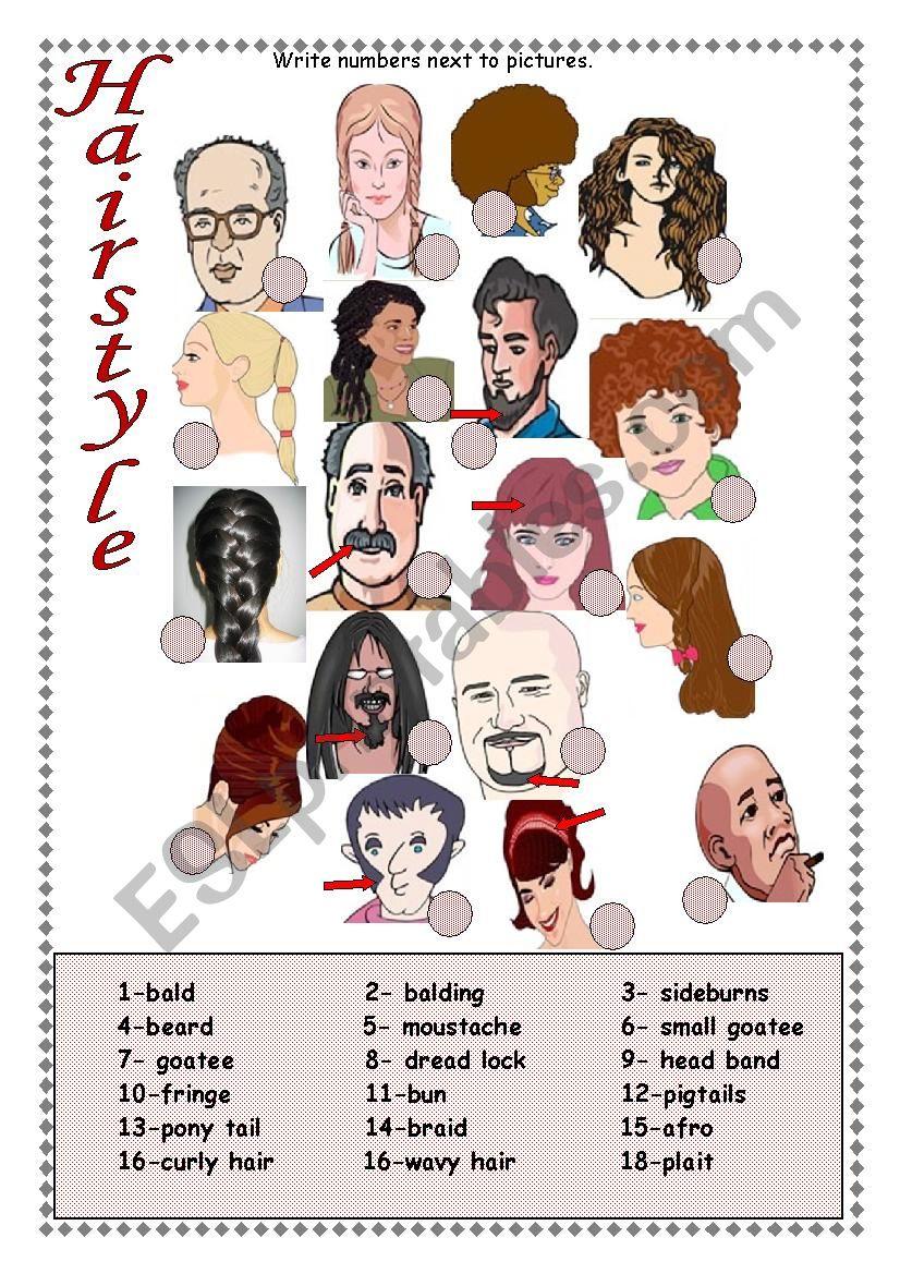 Hairstyle worksheet