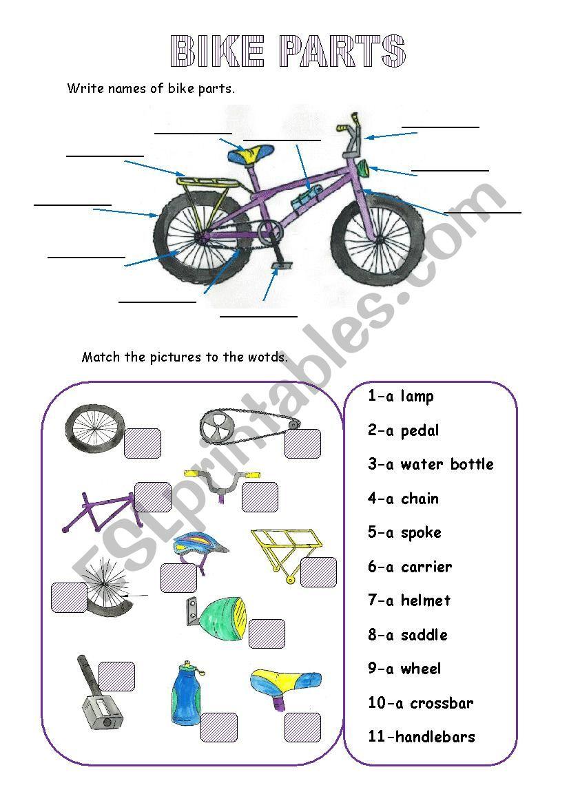 Bike Parts Esl Worksheet By Monika 79