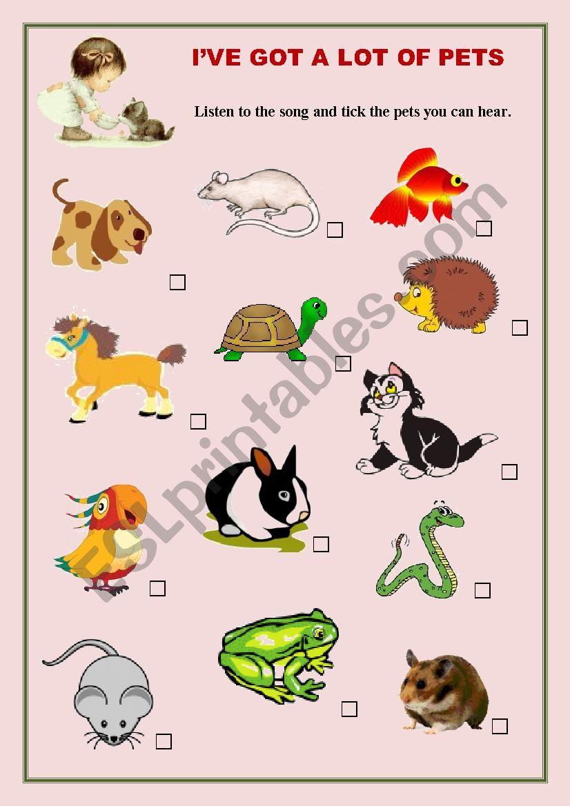 I´ve got a Lot of Pets worksheet