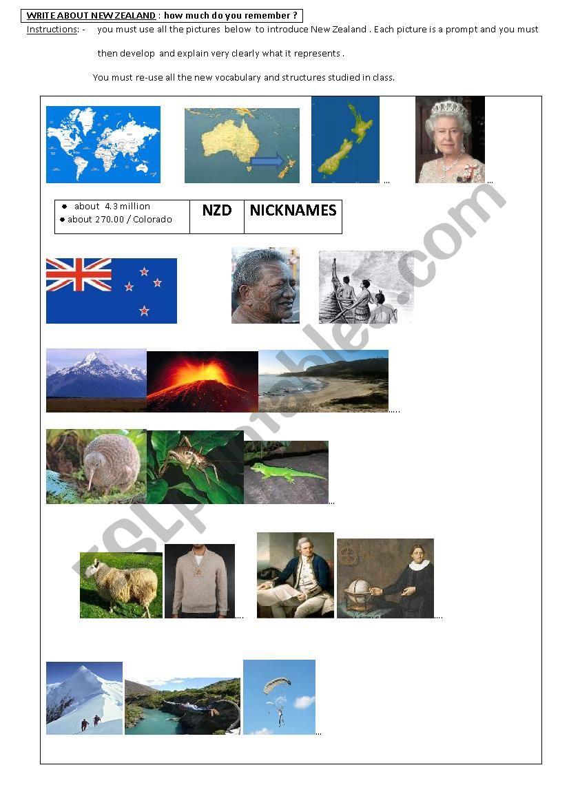 NEW ZEALAND / CULTURE  worksheet