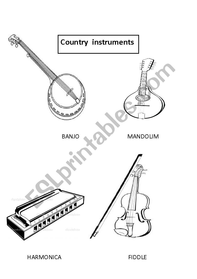 COUNTRY INSTRUMENTS worksheet