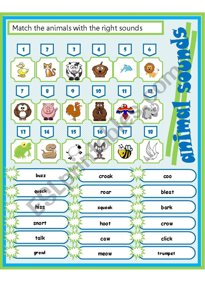 animal sounds worksheet