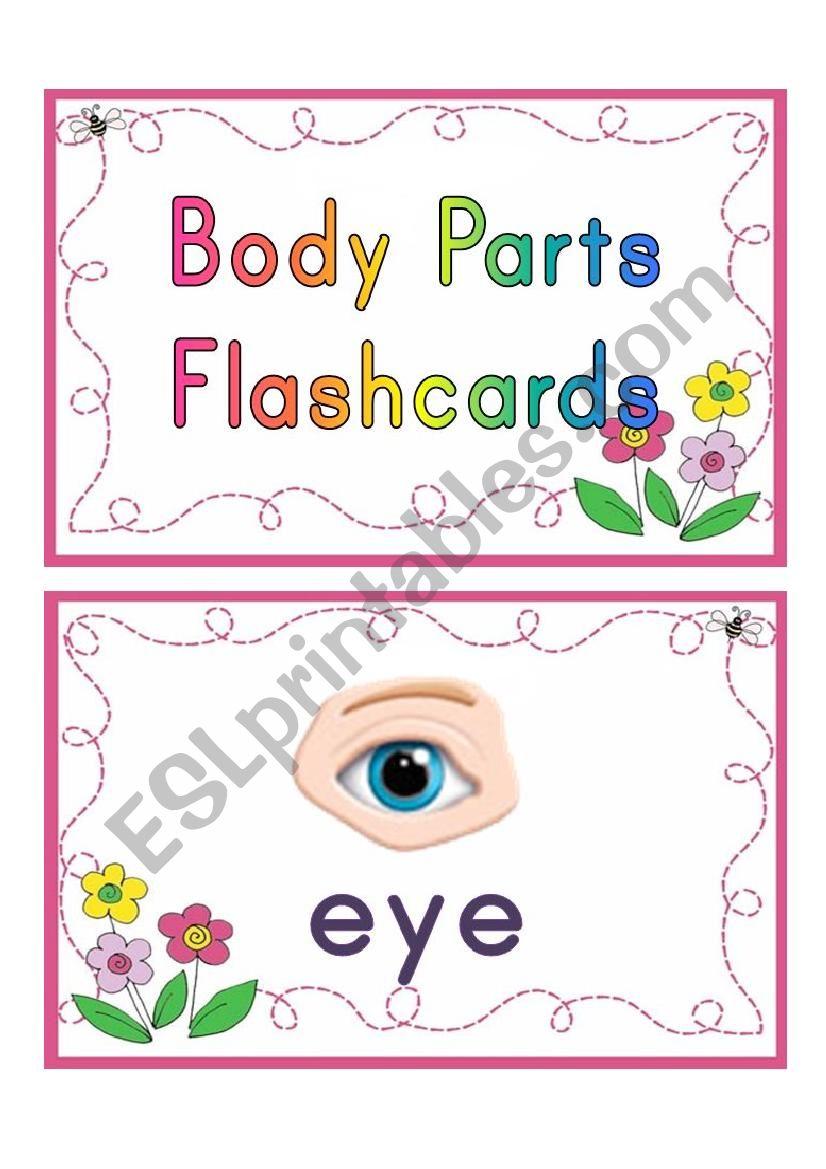 body parts flashcards worksheet