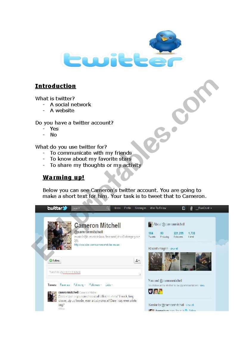 Twitter worksheet