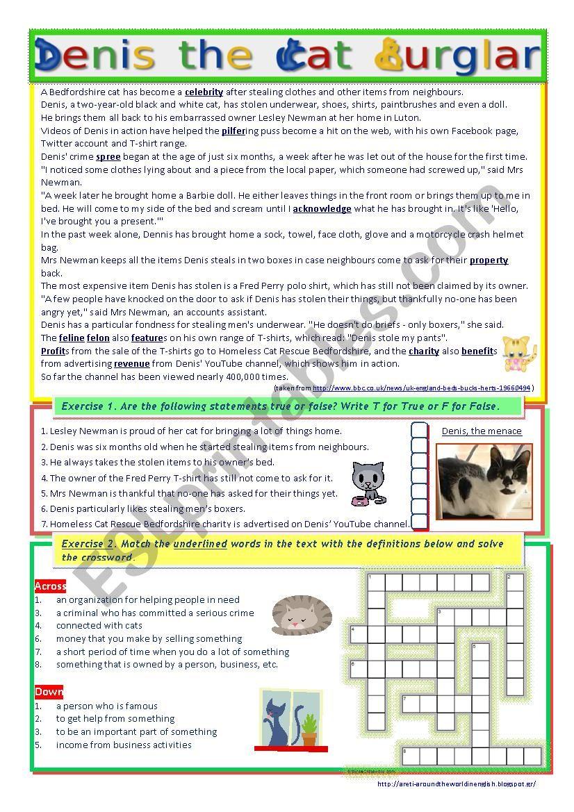 Denis the Cat Burglar (Reading + Video Listening)