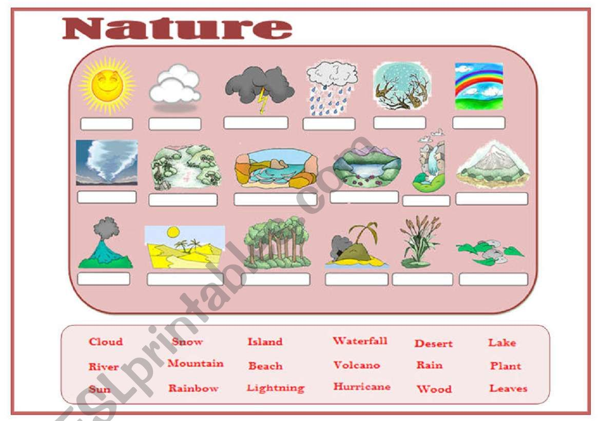 Nature Vocabulary Esl Worksheet By Mmargalef
