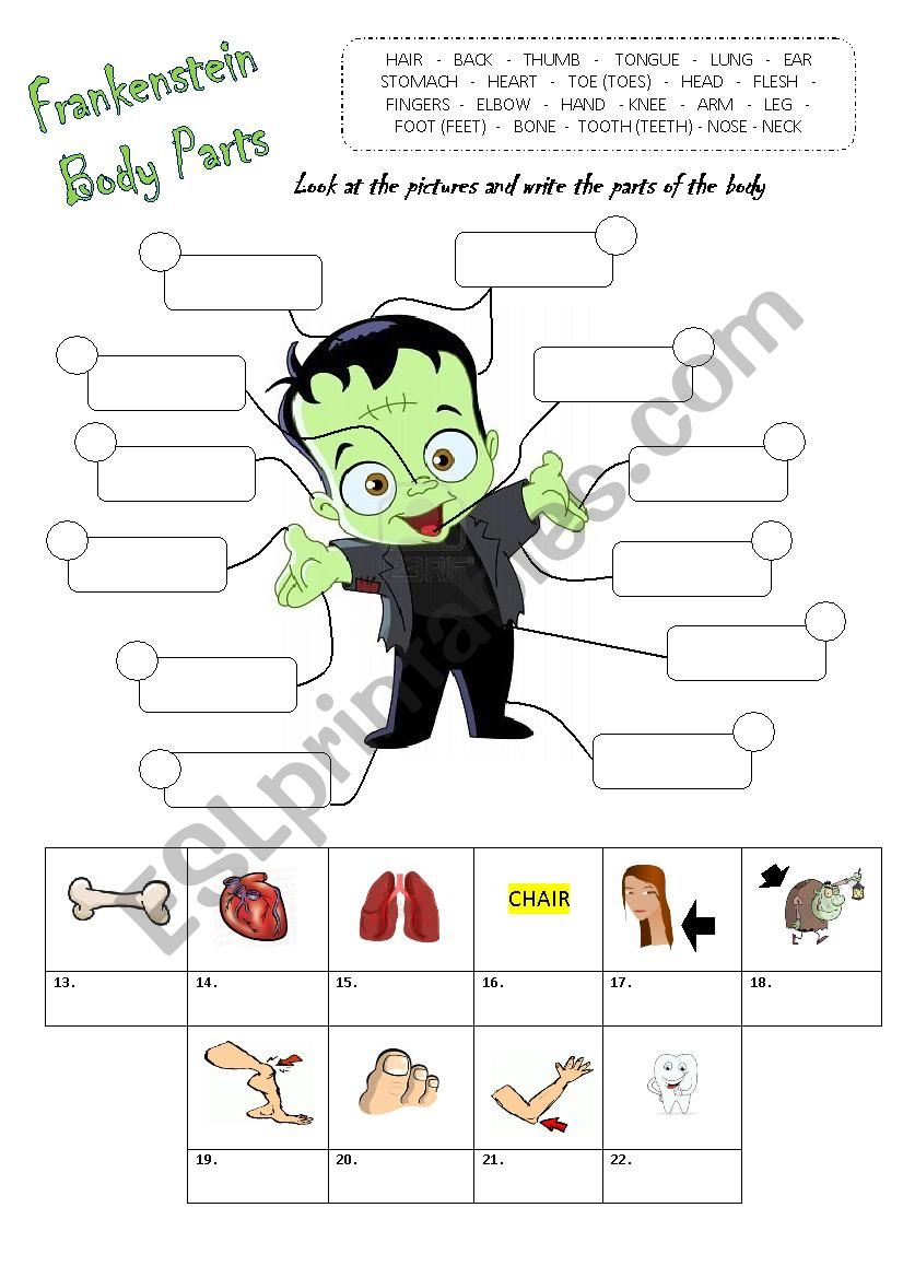 Parts of the Body - Halloween worksheet
