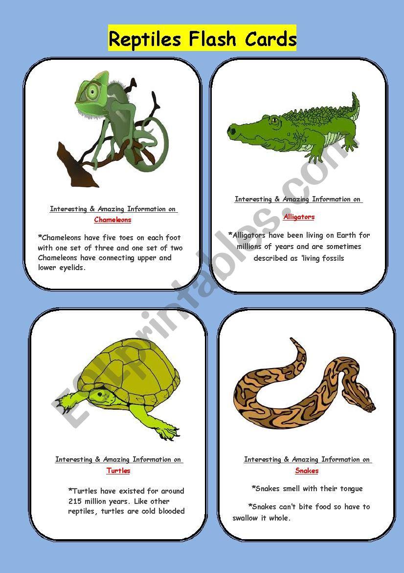 Reptiles Flash Cards worksheet