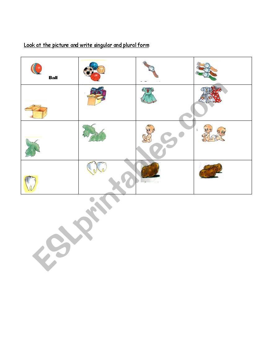 Singular and Plural form worksheet
