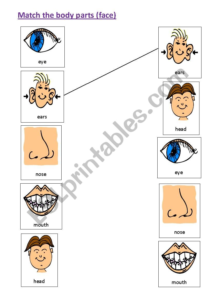 Matching body parts - face - ESL worksheet by muppet007