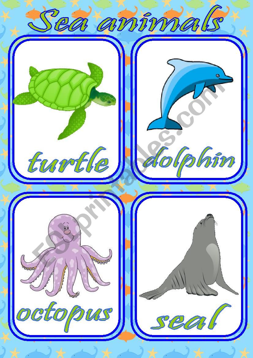 SEA ANIMALS FLASHCARDS - SET OF 12