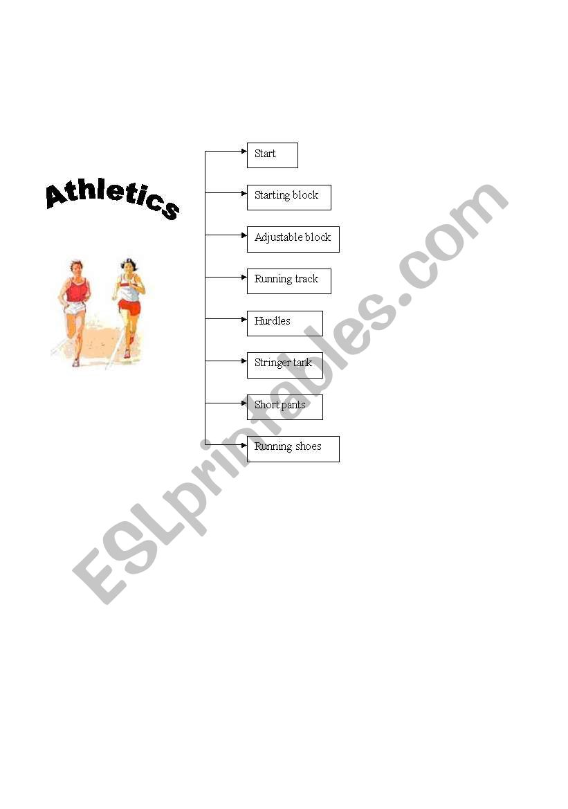 vocabulary about sports worksheet