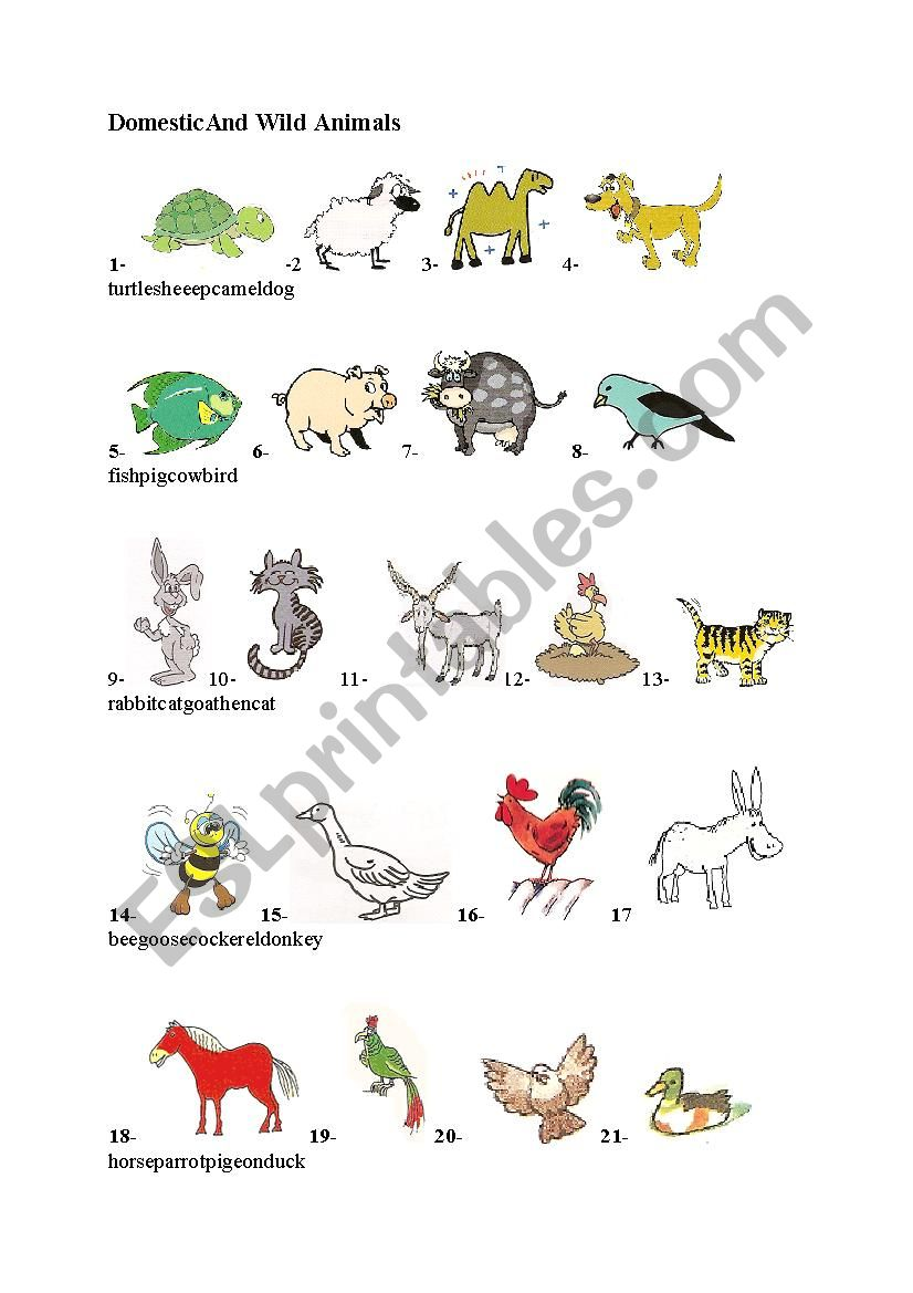 domestic and wild animals - ESL worksheet by hido