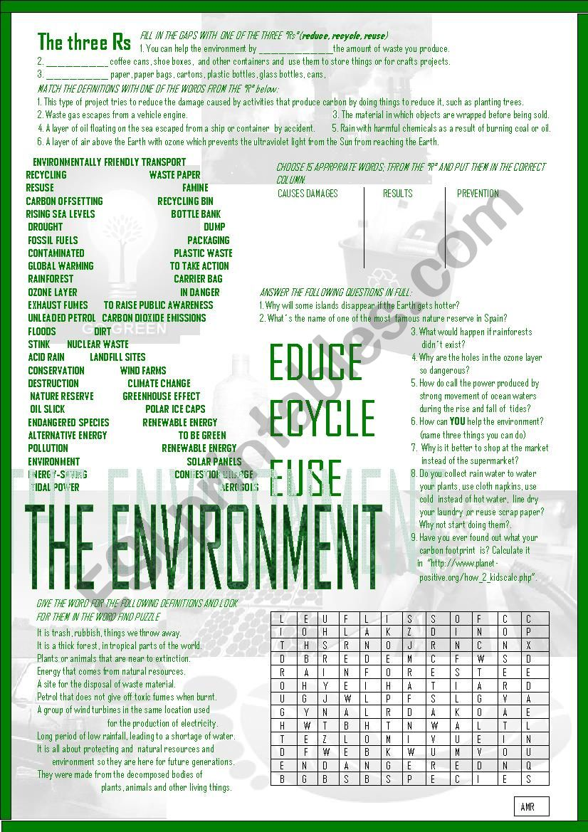 THE ENVIRONMENT worksheet