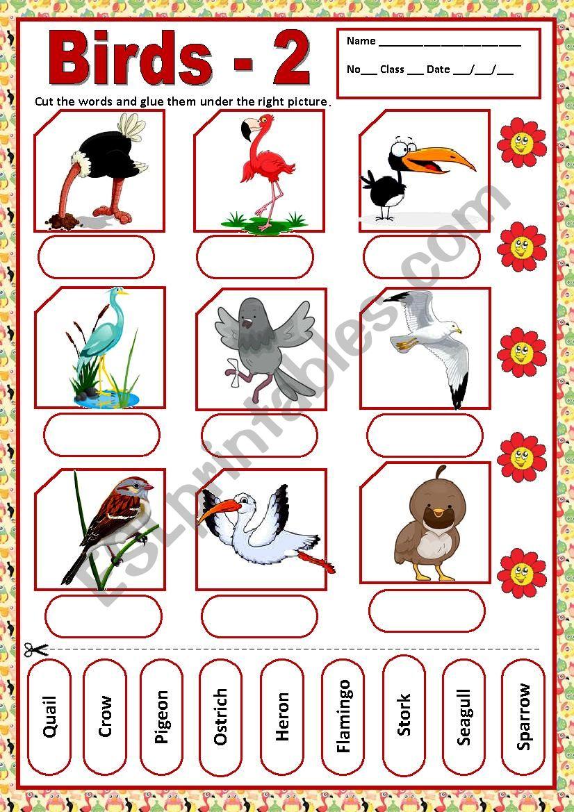 BIRDS 2 - MATCHING worksheet