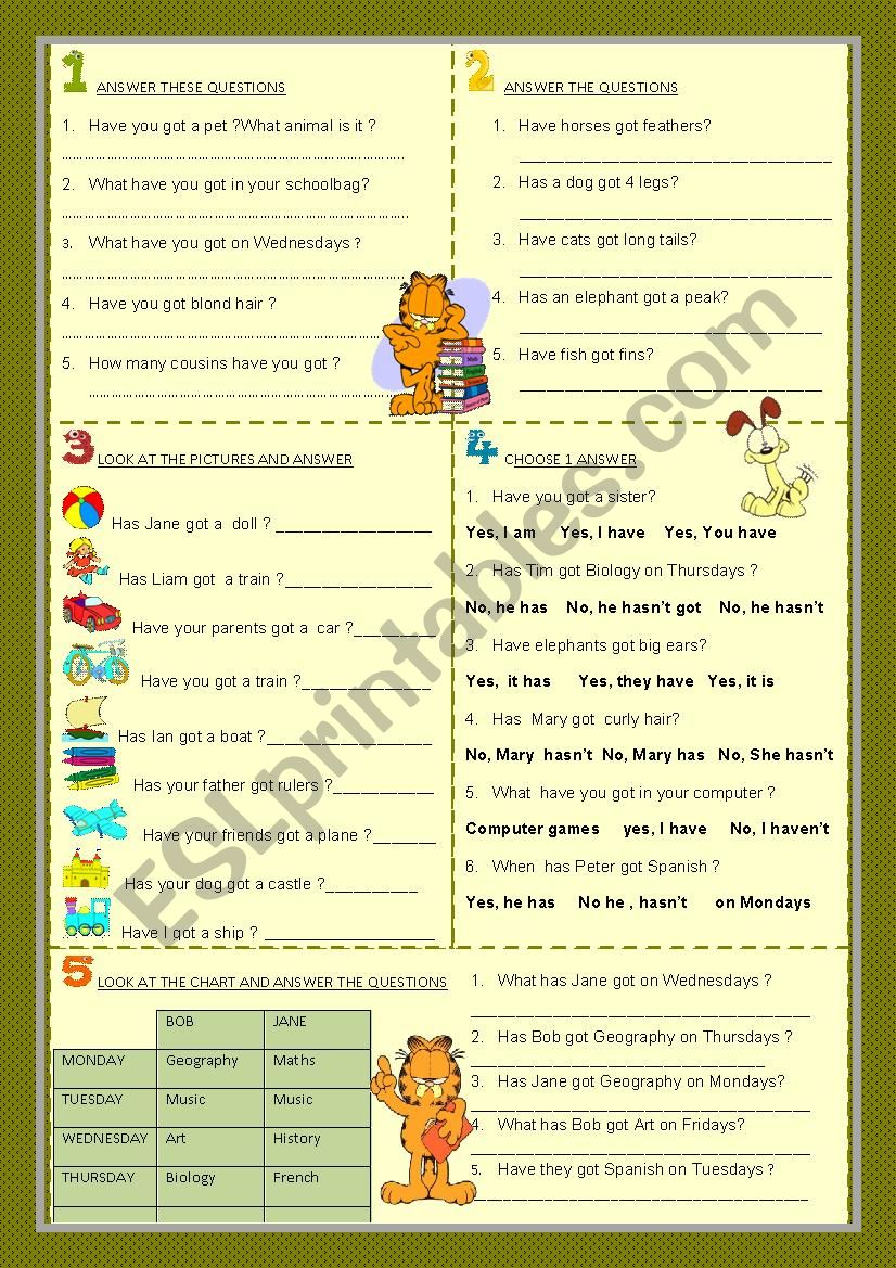verb have - interrogative : answers to yes-no / wh- questions ( part 2 )