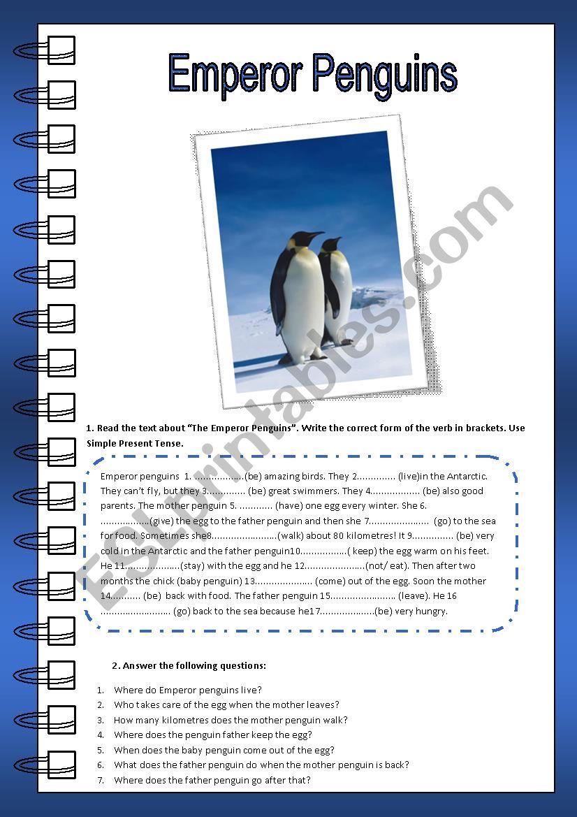Emperor Penguins (Reading) worksheet