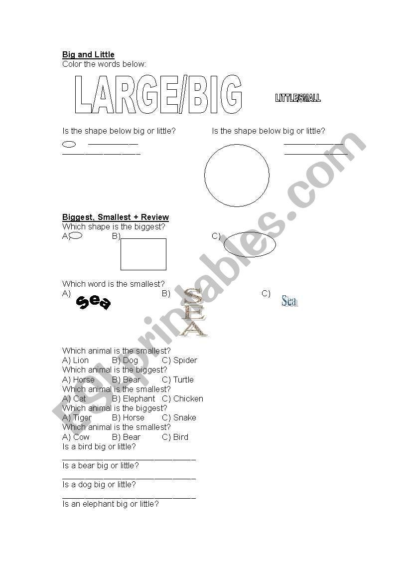 Size worksheet worksheet