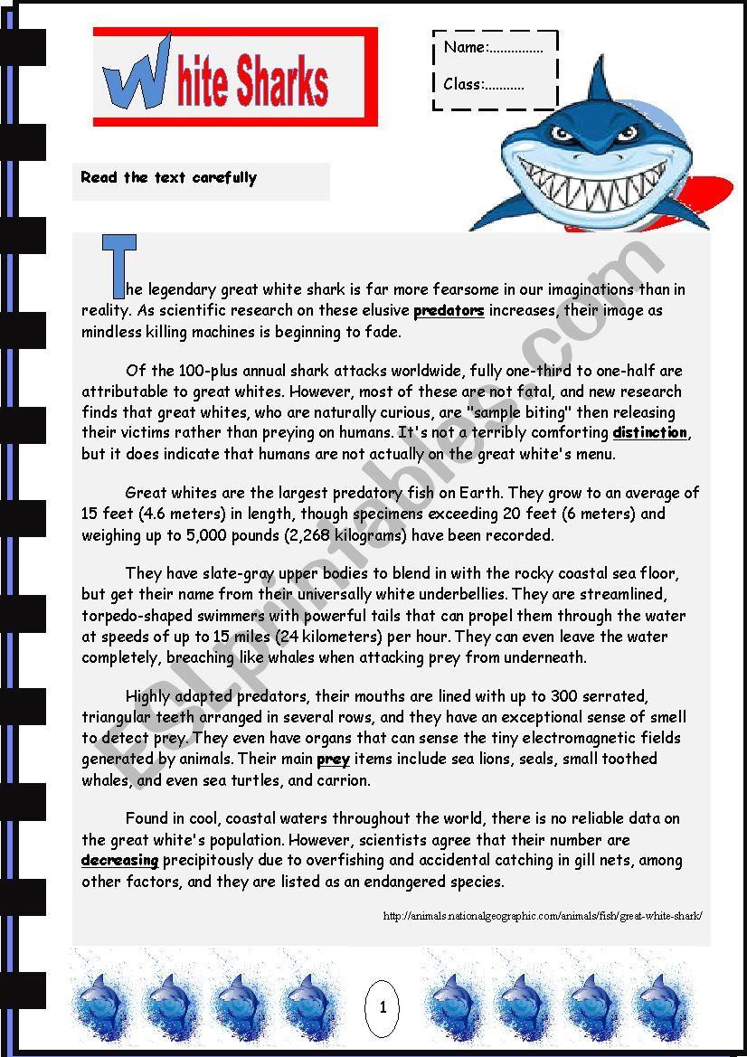 Whtie Sharks worksheet