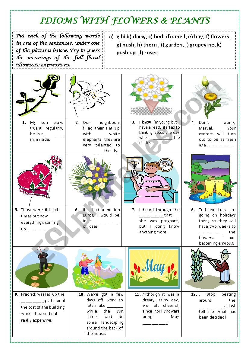 IDIOMS with FLOWERS & PLANTS (plus key and explanations)