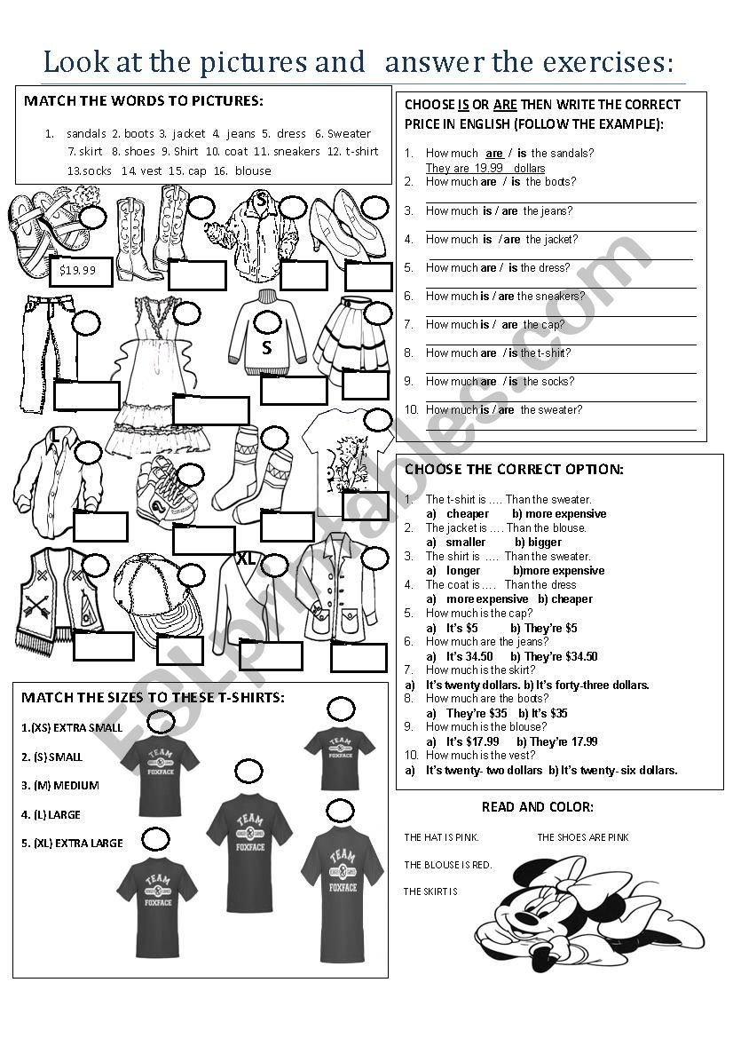 HOW MUCH IS / ARE....? worksheet