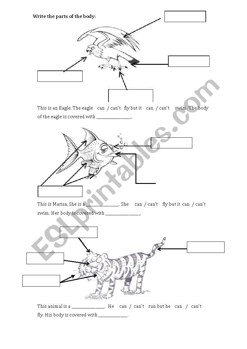 animal body parts esl worksheet by jessicaorejuela. Black Bedroom Furniture Sets. Home Design Ideas