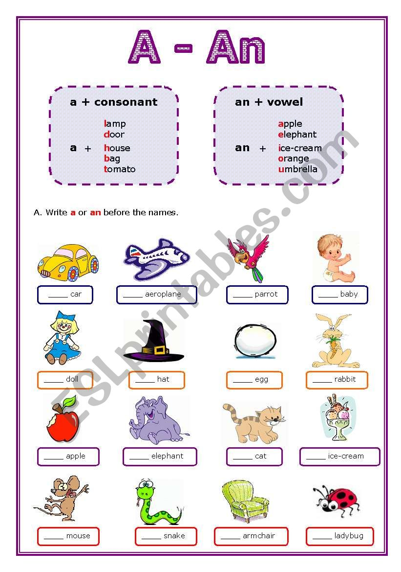 Articles: A or An worksheet