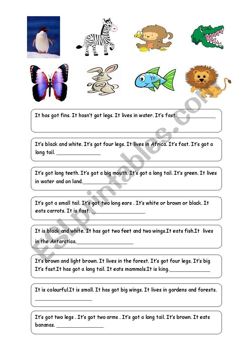 ANIMAL RIDDLES-1 (Descriptions of 24 animals)