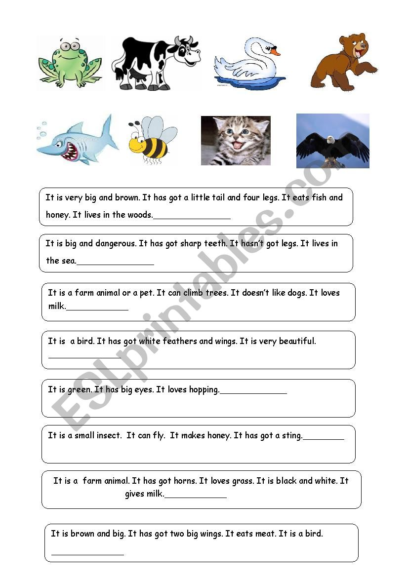ANIMAL RIDDLES-2 (Descriptions of 24 animals)