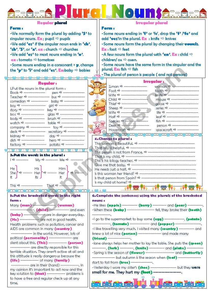 The plural form ; regular and irregular