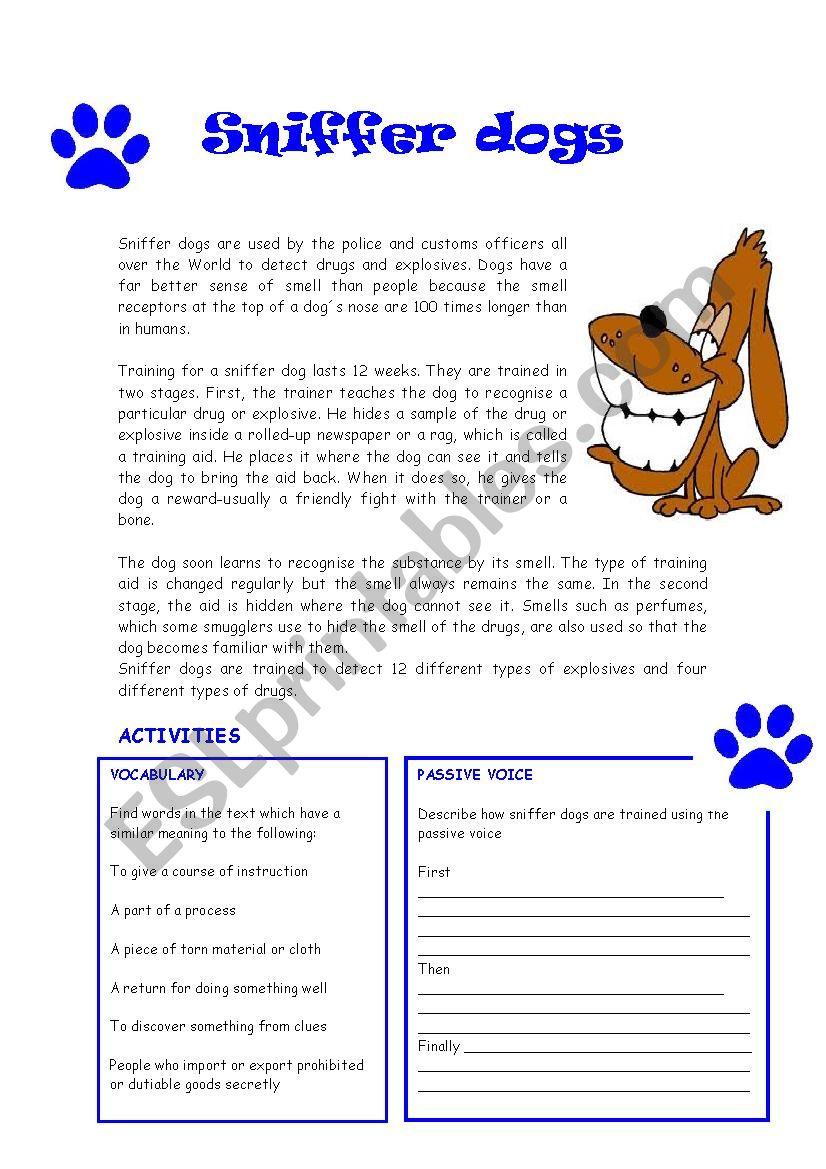 Reading : Sniffer dogs worksheet