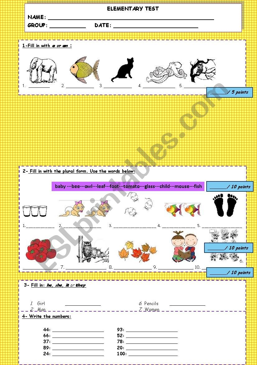 Test/ review worksheet for elementary students: animals, jobs, irregular plurals, verb to be