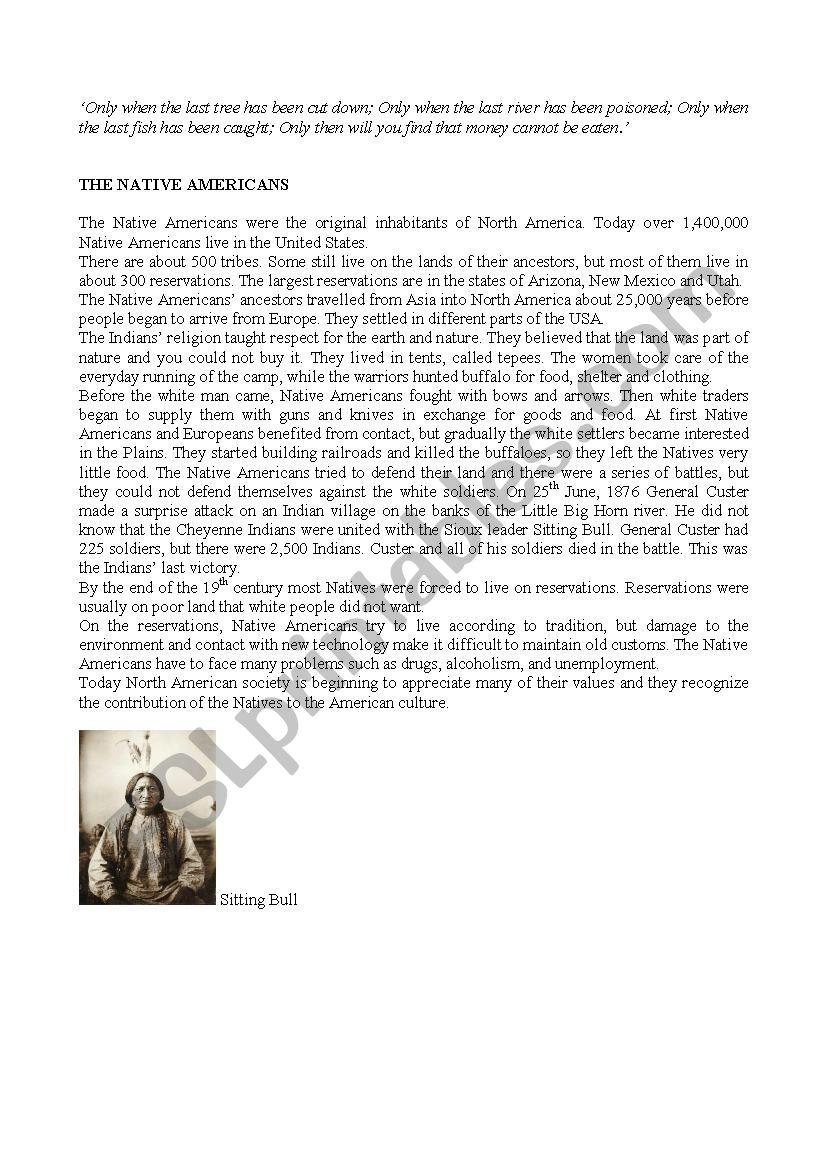 The Native Americans worksheet