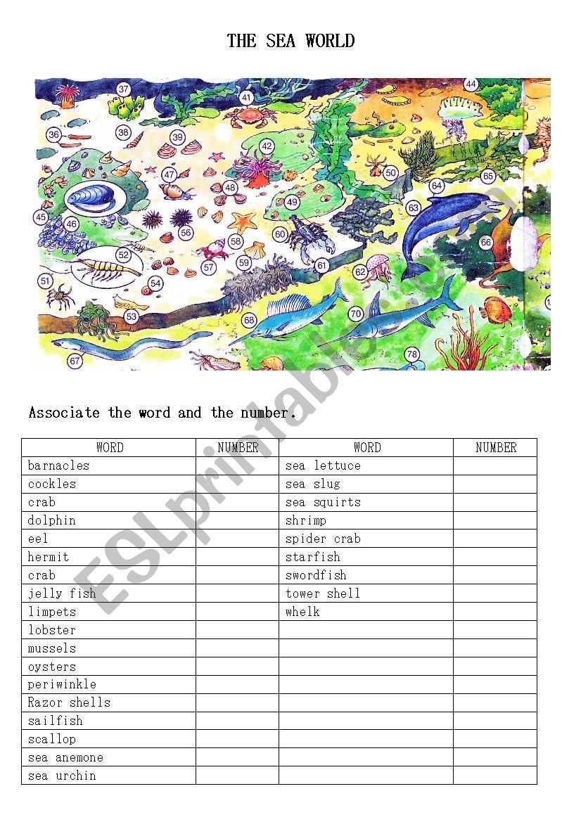 The sea world worksheet