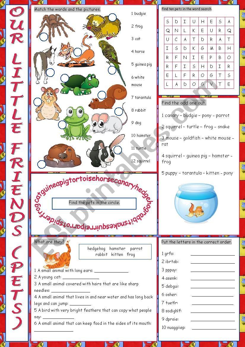 Pets Vocabulary Exercises worksheet