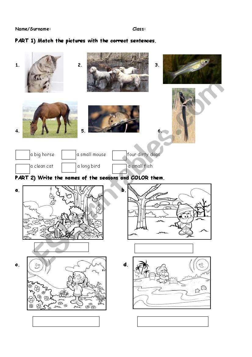 animals,seasons,months,adjectives