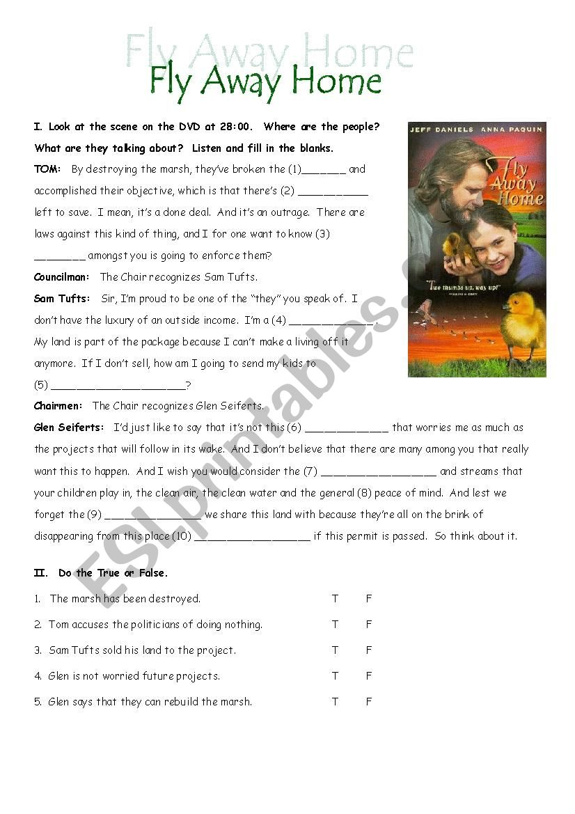 Fly Away Home 3 DVD Listening Exercises