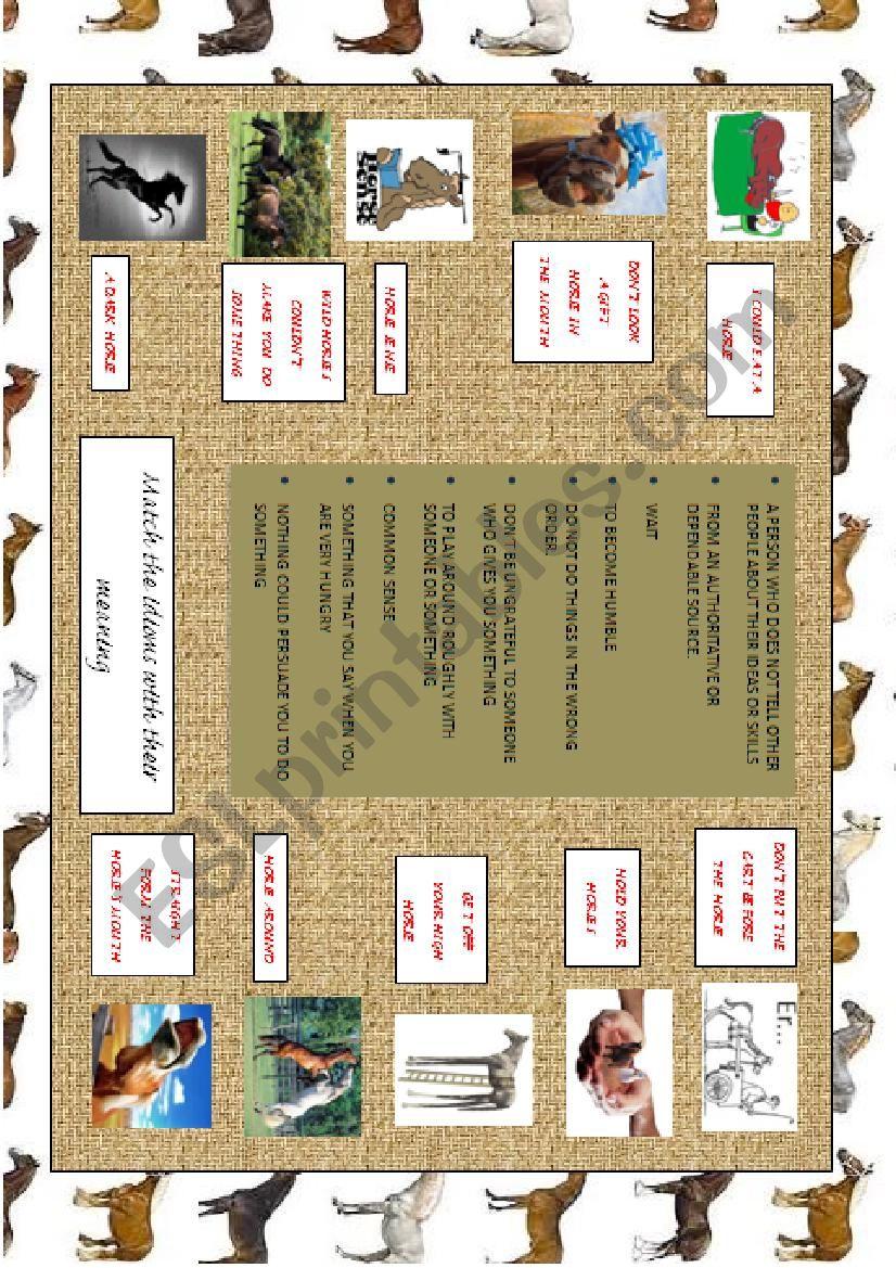 IDIOMS: HORSES (worksheet) worksheet