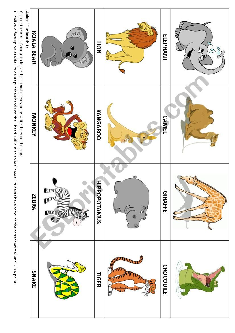 Animal flashcards 1 & Game worksheet